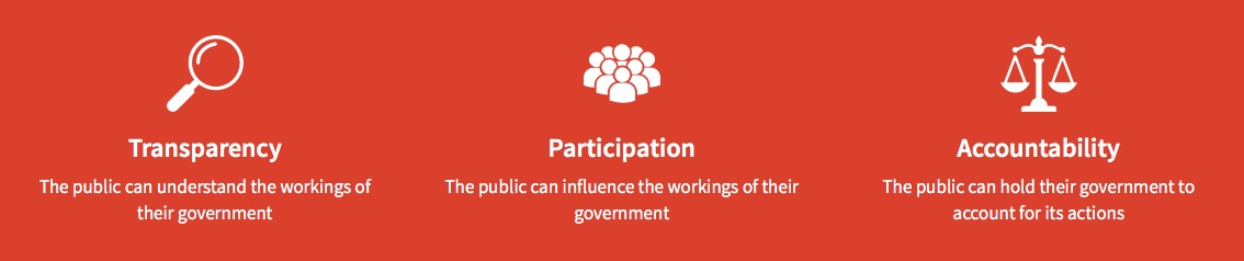 Open-Government-Network