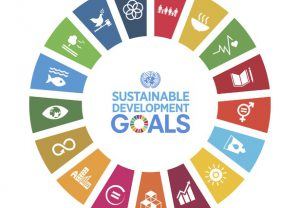 Image of the Global Goals